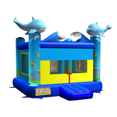 Bouncers Dolphins