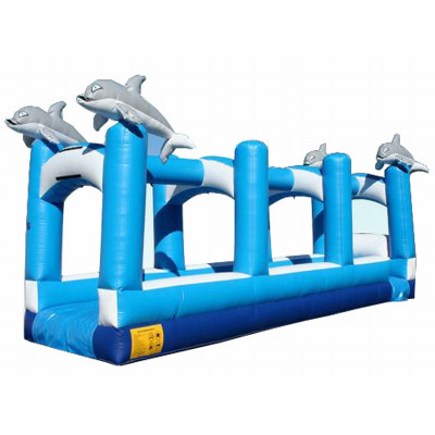 Dolphin Slip And Slide