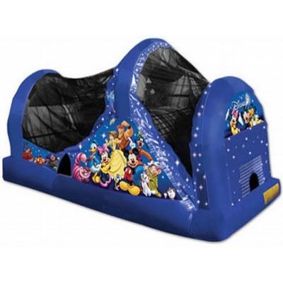 Disney Slide