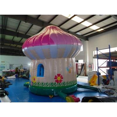 Inflatable Mushroom Combo