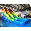 16'Ft Dolphin Slide