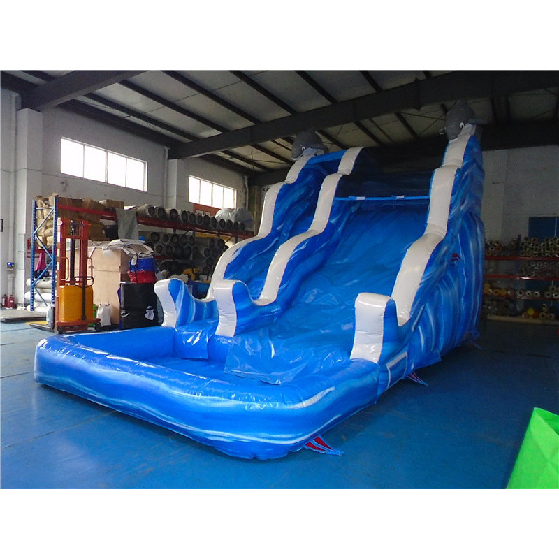 Inflatable Dolphin Water Slide