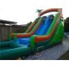 Inflatable Dual Lane Tropical Water Slide