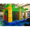 Bouncy Castle Multiplaylion